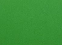 フラメンコ衣装の無地生地・グリーン